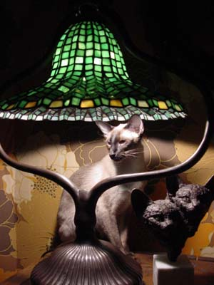 Bagus with tiffany lamp and a Gerdy Oskam figurine