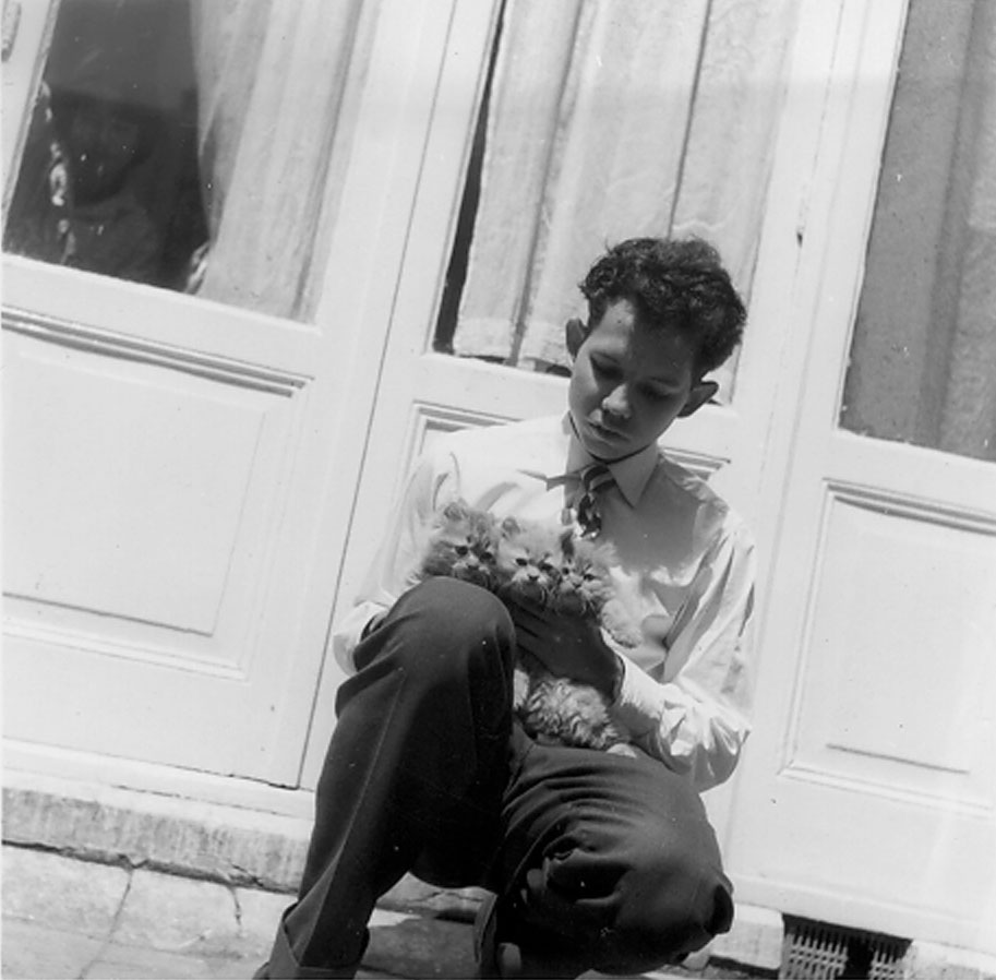 Harry met Perzische kittens in 1958